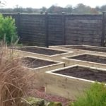 Raised beds for growing vegetables