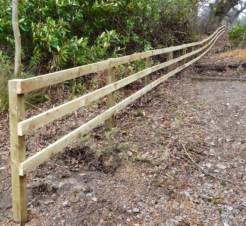 Post and rail fencing bluebirch
